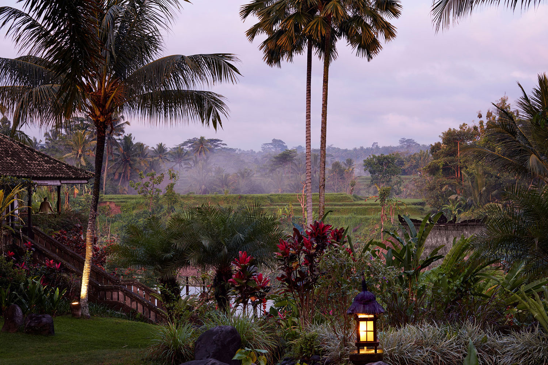 villabayad_ubud_garden_evening_mist