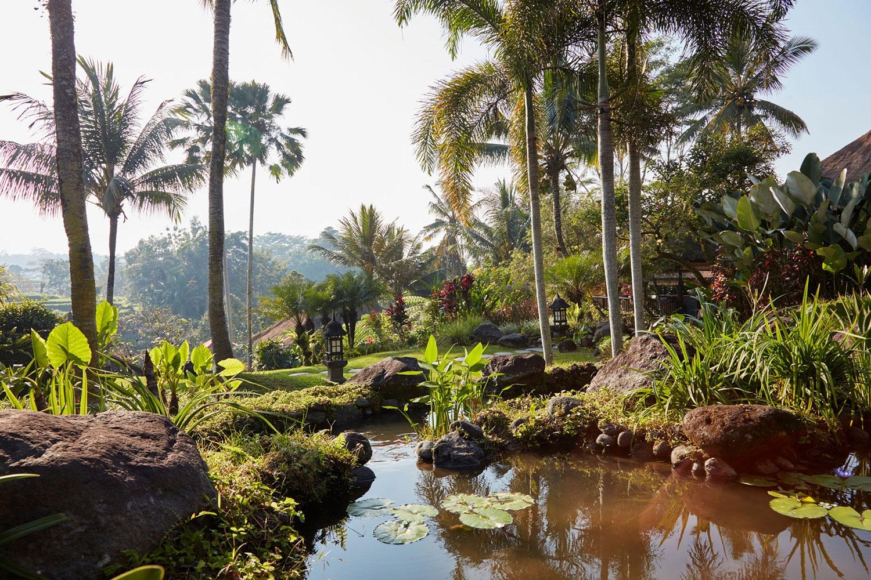 villabayad_ubud_garden_ponds_view