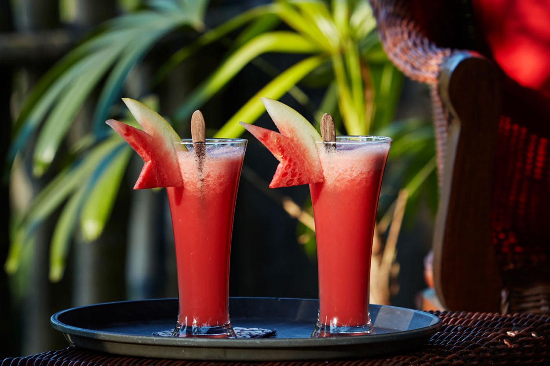 villabayad_ubud_villa_tropical_drinks